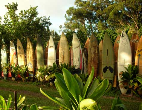 Buy surfboards made from recyclable materials and covered in epoxy resin - Image courtesy of http://polizeros.com/wp-content/uploads/2006/12/surfboard-fence-1-18071.jpg