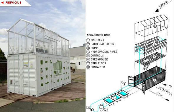 Urban Aquaponics Grow Fish And Hydroponic Food In