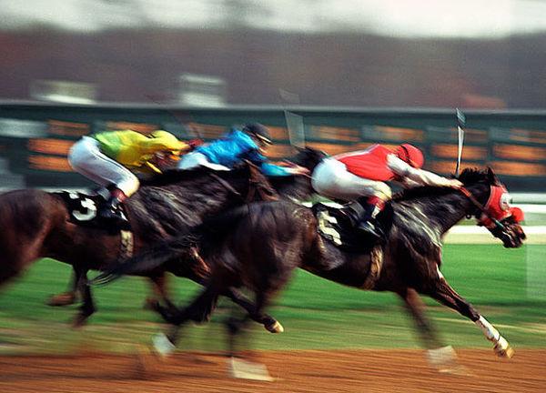 Horse_Race_Finish_Line